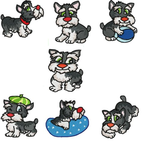 Miniature Schnauzer Dog. Miniature Schnauzers